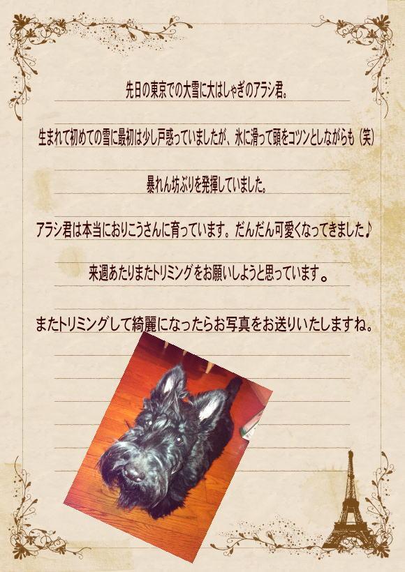 a-2013-1.jpg