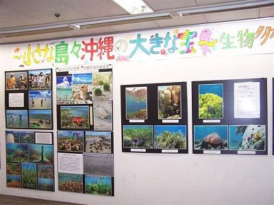 COP10沖縄文化写真 002