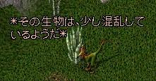 WS000302.JPG