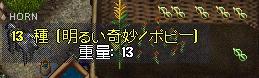 WS000495.JPG