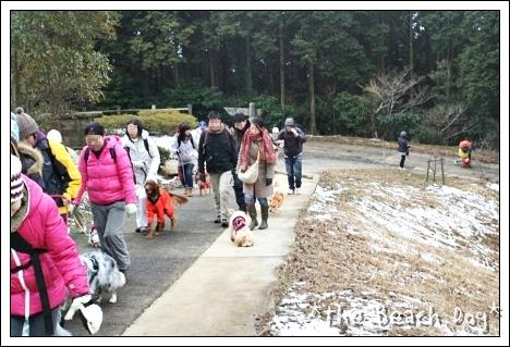 2011-02-13-006-001.jpg