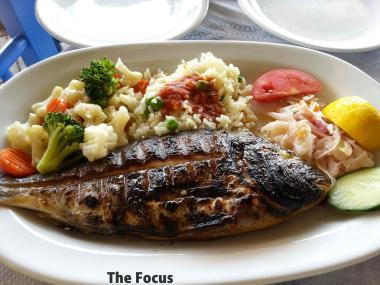 ギリシャ ピタゴリオ サモス島 魚