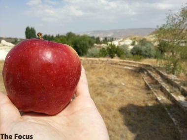 カッパドキア りんご