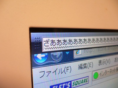 P1020888.jpg