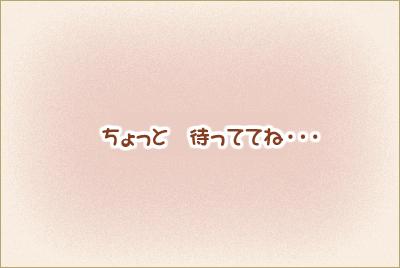 09-1116-34.jpg