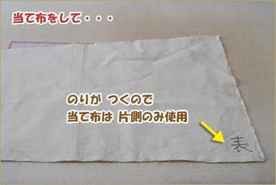 2010-0404-10.jpg