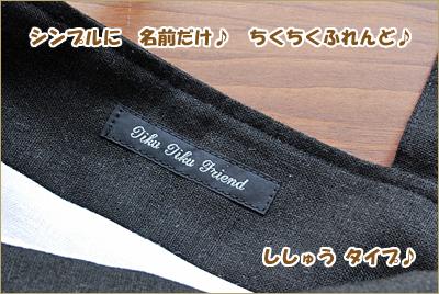 2010-0417-03.jpg