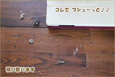 2010-0601-09.jpg