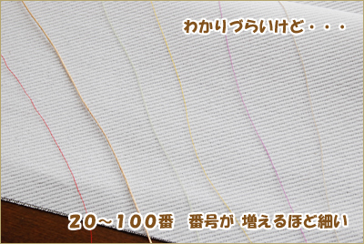 2010-0601-22.jpg