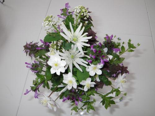 野辺の花410