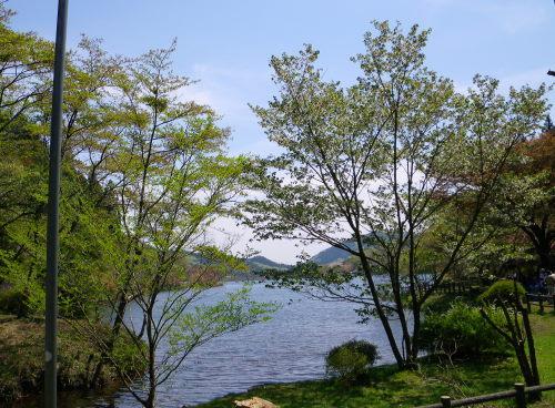 森林公園53