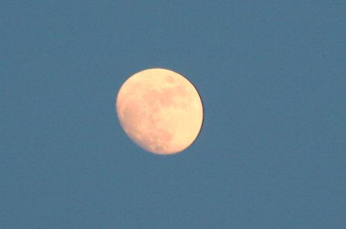 お月さま525の1