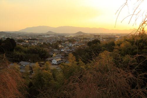 miwa04041.jpg