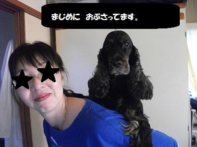 2013_0310とし0068