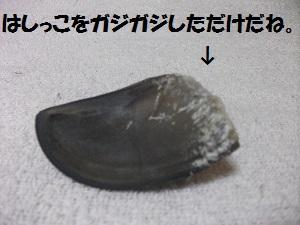 2013_0324春0048