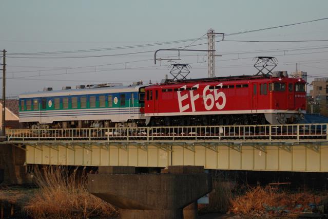 DSC_1769.jpg