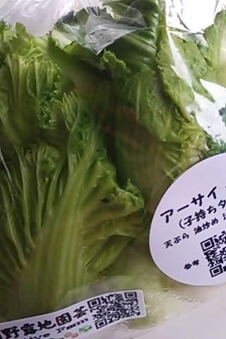 児菜(アーサイ)