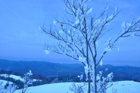 冬の大川原高原