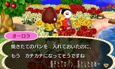 otoshimono-o-rora2.jpg