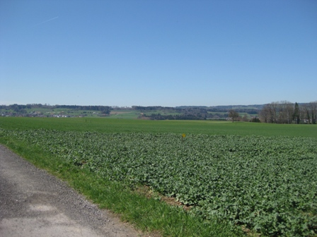 Rotkreuz-2.jpg
