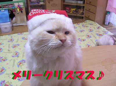 サンタ モモ やる気なし2