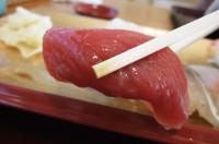fujizen13.jpg