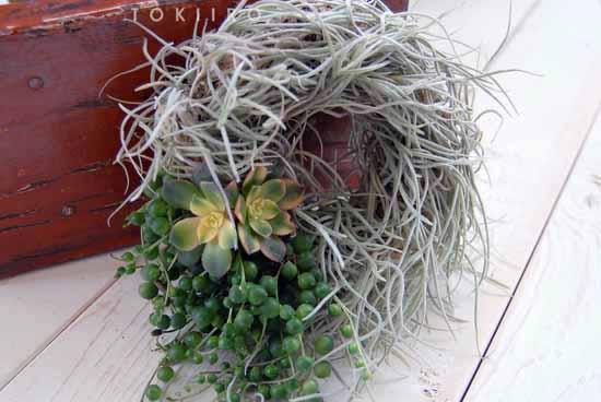 wreath024-1.jpg