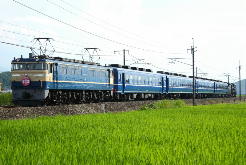 s-65501.jpg