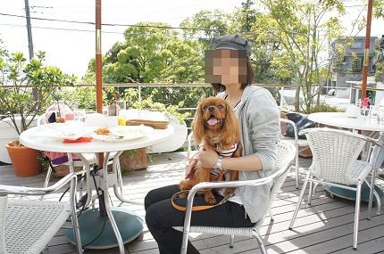 嵐丸 2011.5.2-8