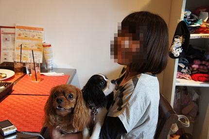 嵐丸 2011.5.22-327