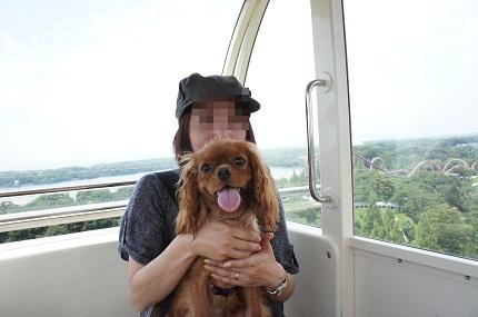 嵐丸 2011.6.30-23