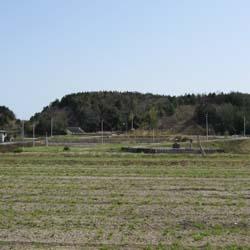 田んぼの神社2