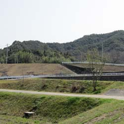 田んぼの神社3