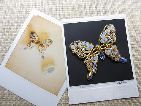 ホワイト蝶々2