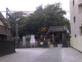 踏切と神社