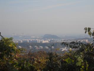大丸山からの展望