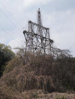 噂の谷村線鉄塔