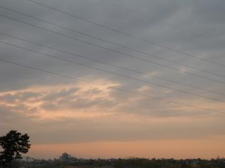 武蔵境-新鶴見線の電線と夕焼け・・・