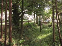 小山城空堀跡