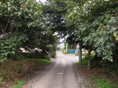 喜沢の旧道
