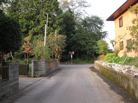 小金井の旧道
