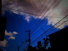 March_01.jpg
