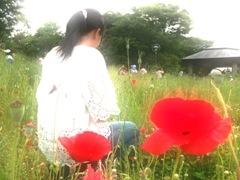 otonohaco_87.jpg