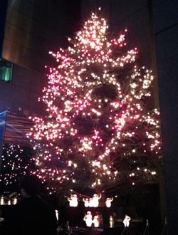 tree_ginza