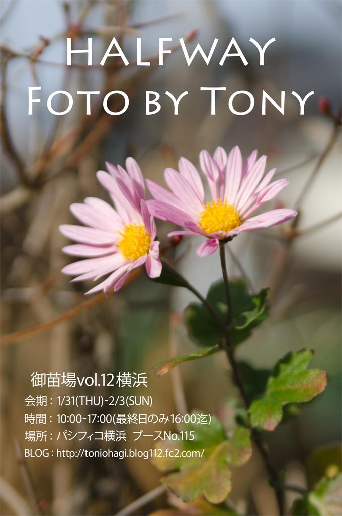 fotobytony_onaeba_12.jpg