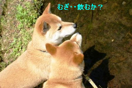 2010_0508(014).jpg