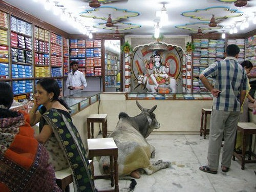 インド11