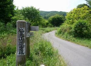 仙元山遊歩道 (1024x748) (800x584)
