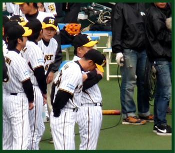 絵日記12・3ファン感矢野2