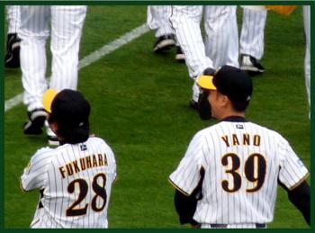 絵日記12・3ファン感矢野0